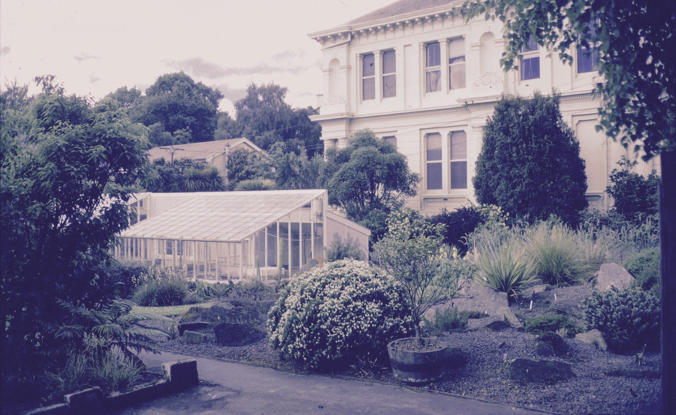 About Christie,  glasshouse at the Department of Botany, University of Otago