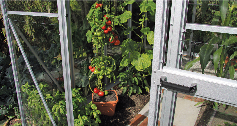 Christie glasshouses - grow food all year round